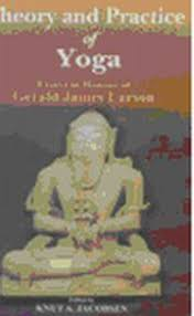 theory and practice of yoga essays in honour of gerald james  click to enlarge