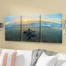 turtle framed 3 panel photo graphic print set on canvas on 3 panel wall art set with 3 panel wall art wayfair