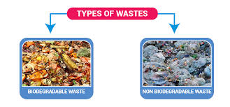 Waste Types Of Waste Sources Of Waste Recycling Of Waste