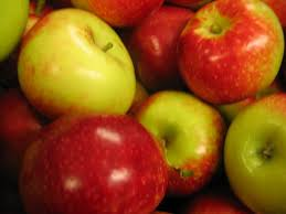 Bowl Or Fridge How To Best Store Your Apples Tuttle