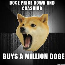 hello this is doge. lets become insanity doge! buy! hello this is doge r