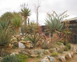 small rock garden design ideas home