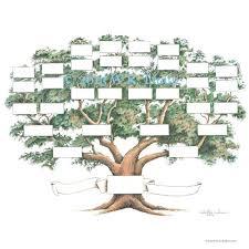 Family Tree Scrapbook Chart 12x12 Inch 5 6 Generations