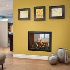 napoleon direct vent gas fireplace hd81 see thru