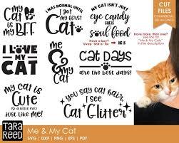 Cat Quotes Interesting Me And My Cat Cat Svg Cat Svg Bundle Cat Humor Svg Cat Etsy