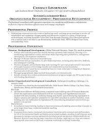 Small Business Consultant Sample Resume Mitocadorcoreano Com