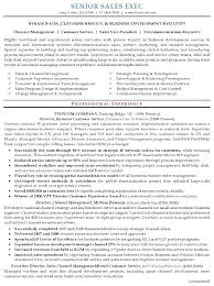 Sales Manager Resume Examples Property Manager Resume Sample