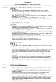 Download Pmo Lead Resume Sample as Image file