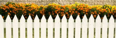 fence. Fencing Law Fence