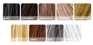 Toppik Color Chart Toppik Normal Toolkit And Hair Fattener I Uphais