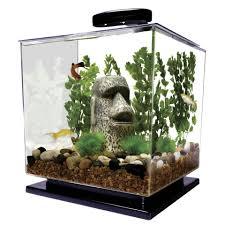 office desk aquarium. 3 Gallon Cube Aquarium By Tetra Photo From Office Desk L