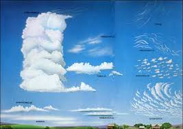 Tpwd Clouds Young Naturalist