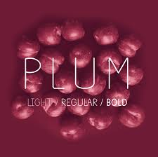 Font To Use For Resume Plum Fun Free Font On Behance 66