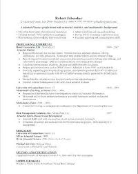 Skills On Resume Examples Sample Professional Resume Adorable Abilities For Resume