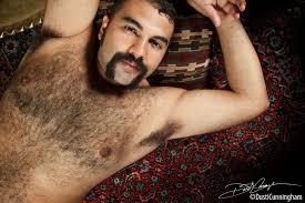Hairy hard muscle bears