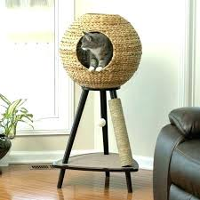 cool cat tree furniture. Unique Cat Furniture Tree Cool I