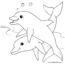 dolphin animal coloring pages