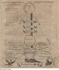 samuel norton alchemist  ramist tincture tree of physics and alchemy illustration from catholicon physicorum 1630 by samuel norton and edmund deane