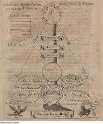 samuel norton alchemist  ramist tincture tree of physics and alchemy illustration from catholicon physicorum 1630 by samuel norton and edmund deane