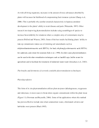 advertisement essays writing vocabulary pdf