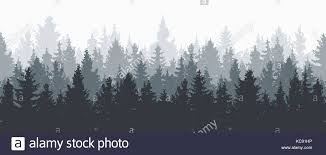 Vector Forest Background Gray Winter Or Spring Woods
