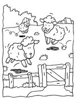 Lammetjes