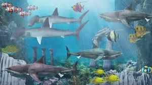 download anipet aquarium live wallpaper apk full version. shark aquarium live wallpaper- screenshot download anipet wallpaper apk full version