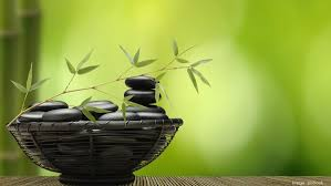 Neginegolestan Even Small Changes Can Really Make Big Difference In Bringing Great Energy To Your Business Planterra Easy Feng Shui Tips For Business Success The Business Journals