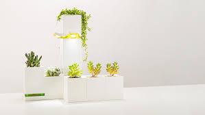 Small Picture Indoor Garden Inhabitat Green Design Innovation Architecture