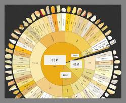 Charted Cheese Wheel Cheese Wheel Chart Business Insider India