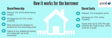 06.05.2014-News&Views infographic - how it works for the borrower