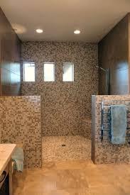 Bathroom Best Open Showers Ideas On Pinterest Master Bathroom