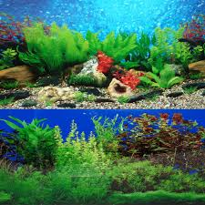 9088 20quot X 48quot Fish Tank Background 2 Sided River