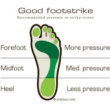 Image result for Comparison of Footstrike Forces