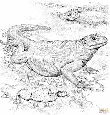 Small Picture Dinosaur Train Coloring Pages Alric Coloring Pages Coloring
