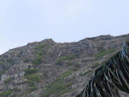 mountain jpg