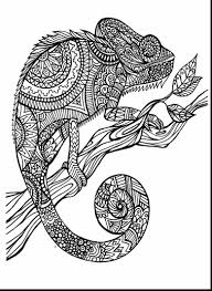 Animal Coloring Pages At Getdrawingscom Free For Personal Use