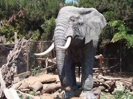 Buin zoo is situated nearby to los guindos. Facebook