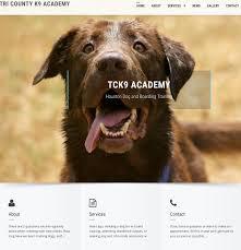 Dog Web Design Bold Playful Dog Training Web Design For Southeast Texas