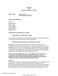 Project Summary Report Example Interesting Example Of Executive Summary For Project Report Research 17