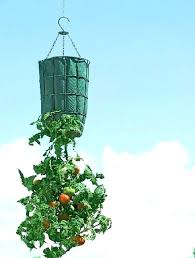 hanging vegetable garden containers upside down