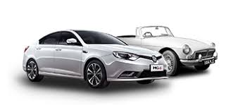 Image result for mg