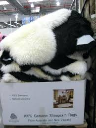 sheepskin rug costco stagger elegant or rugs windward decorating ideas 8