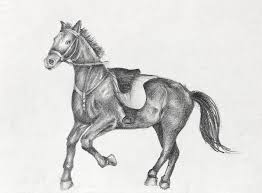 running horse drawing. Brilliant Drawing Run Drawing  Pencil Of A Running Horse By Kiril Stanchev Inside