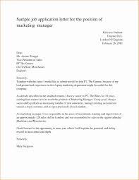 Cover Letter Template For Job Application Doc New Job Letter Format