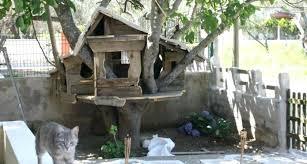 cat tree house outdoor cat tree house cats diy cat tree house plans cat tree house cat tree diy outdoor