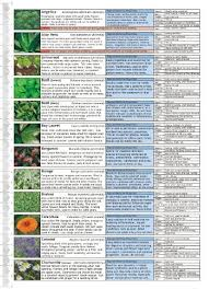 Herb And Medicinal Plants Growing Guide Chart
