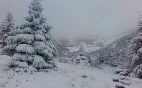 Imagini pentru iarna imagini
