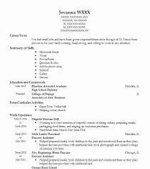 Daycare Director Resumes Director Daycare Resume Template Ipasphoto