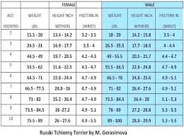 Standard Poodle Weight Chart Achievelive Co